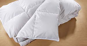 700 Loft Hutterite White Goose Down Duvet from LuxuryBambooBedding.com